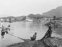 Brislingfiske med landnot på Jelsa, 1912.