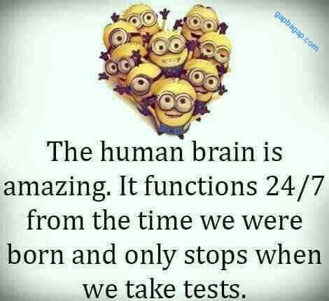 Funny Minions Quote