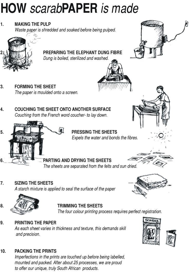 How elephant dung recycled paper is made in South Africa.