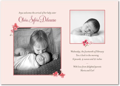 The 25 best Sibling birth announcements ideas – Big Sister Birth Announcement
