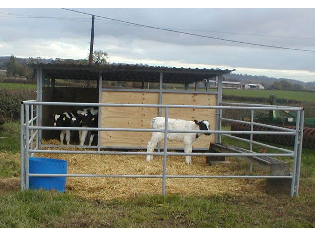 Calf Houses - Note open area at top for ventilation. Could make with Priefert horse stall parts ?