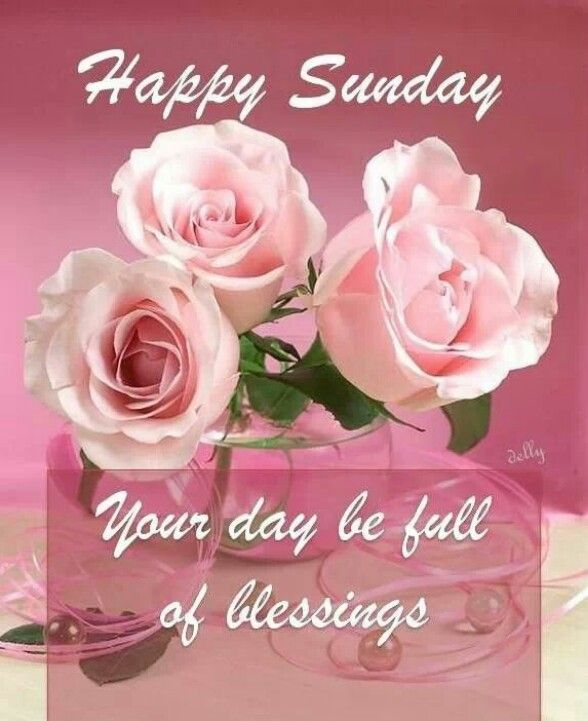 Good Morning My Friend In Korean : Happy sunday may your day be filled with blessings