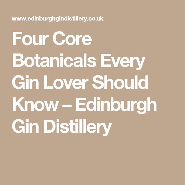 Four Core Botanicals Every Gin Lover Should Know – Edinburgh Gin Distillery