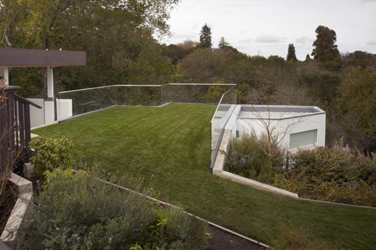 rooftop lawn.