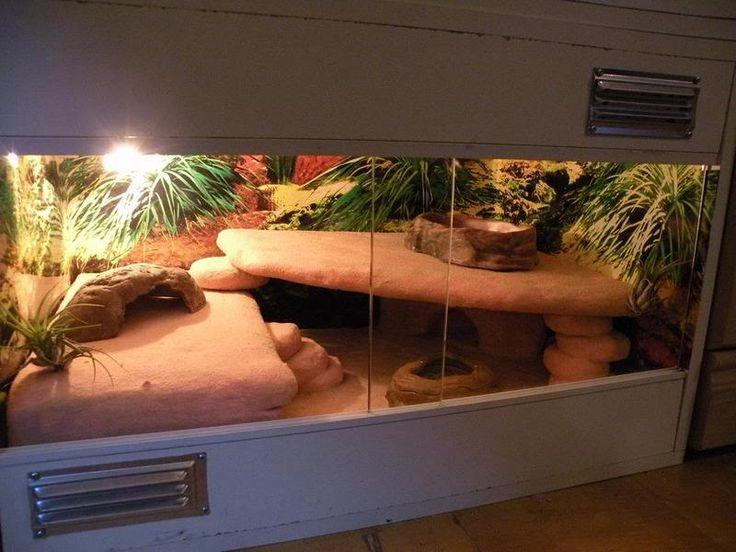 Leopard Gecko Habitat                                                                                                                                                                                 More