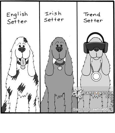 English Setter Irish Setter Trend Setter