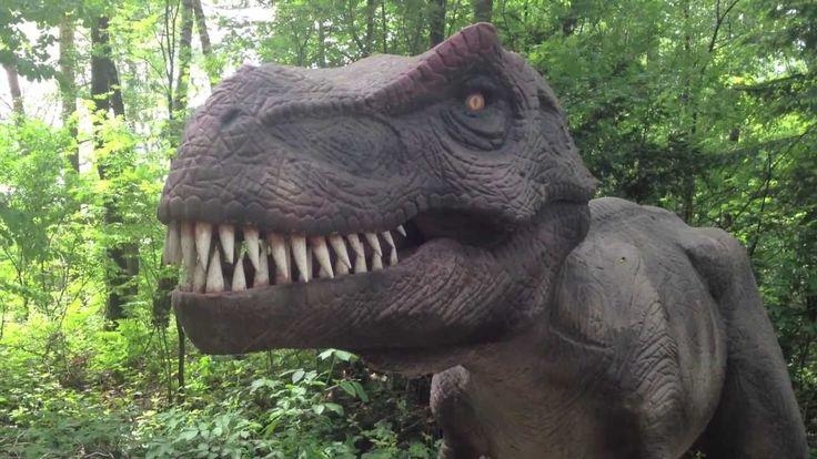 #Dinosaurierpark #Münchehagen Der #Dinopark Münchehagen ist ein Muss für dinobegeisterte #Kinder. 220 #Urzeitriesen warten hier auf die Kinder. Dieser #Film beinhaltet sie alle.  https://www.youtube.com/watch?v=X8RYiz3V7eU