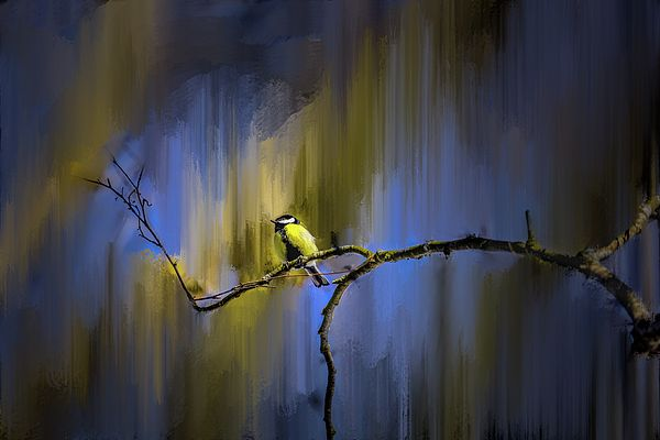 Great tit on branch. Bird sitting on a branch winter to spring 2018. The background is digitally painted to an abstract presentation.The fowl is sitting in a tree near to creek of city Enkoping, Enkoeping, Sweden.