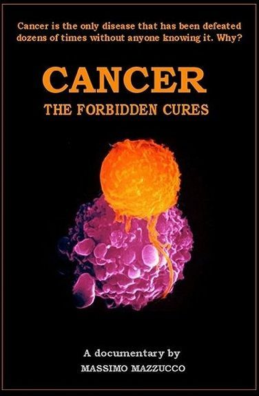 Why Medicine Won't Allow Cancer to Be Cured. Great article and what to eat and supplements etc. Open and read as it's not the book for purchase ad.