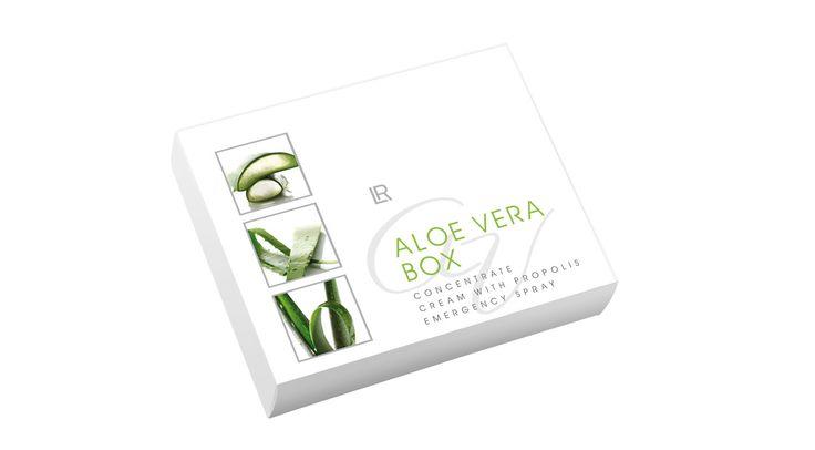 L'Aloe Vera Box = la boîte à miracles pour votre peau ! Idéal pour tous les bobos du quotidien mais aussi pour nourrir et hydrater la peau <3 <3 <3