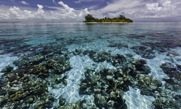 Belize barrier reef -- WWF -- 4-22-16