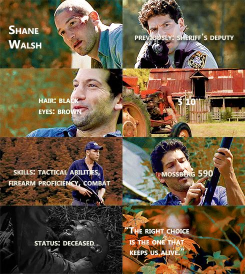 Knowing About Shane Walsh #TWD