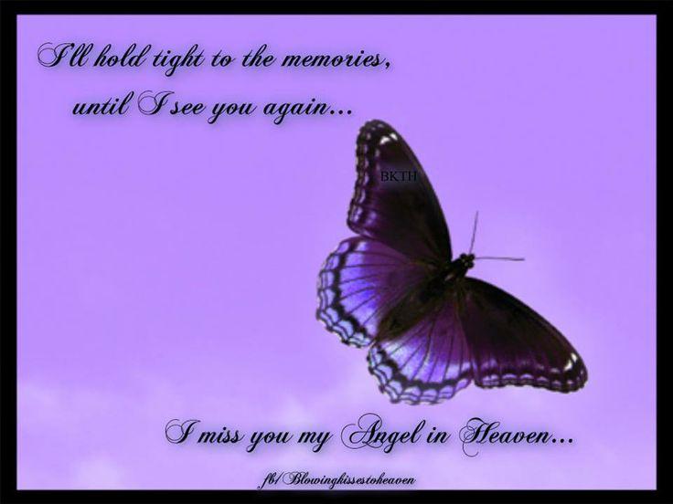 butterfly heaven wallpaper - photo #27