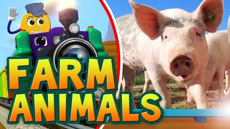 Farm Animals Video for Children | Kids Learn Spelling in English | PicTr...