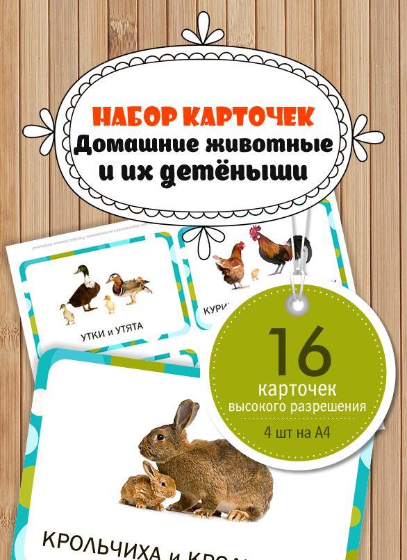 """Карточки """"Домашние животные и их детеныши"""""""