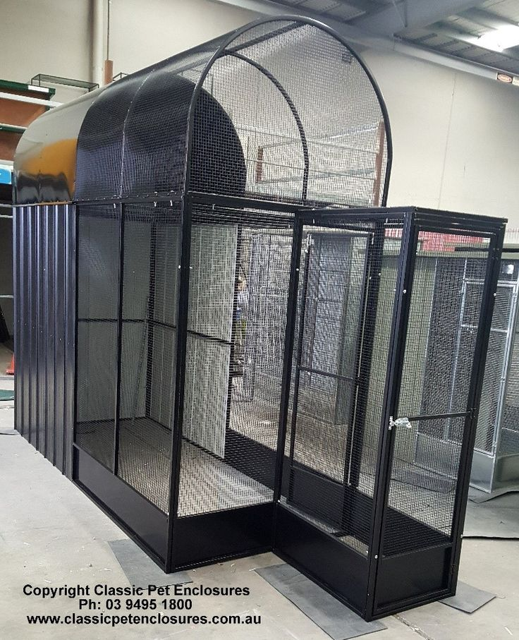 Custom Made Bird Aviary. Dome top and small lock entry system. Powder Coated BLACK. Beautiful!