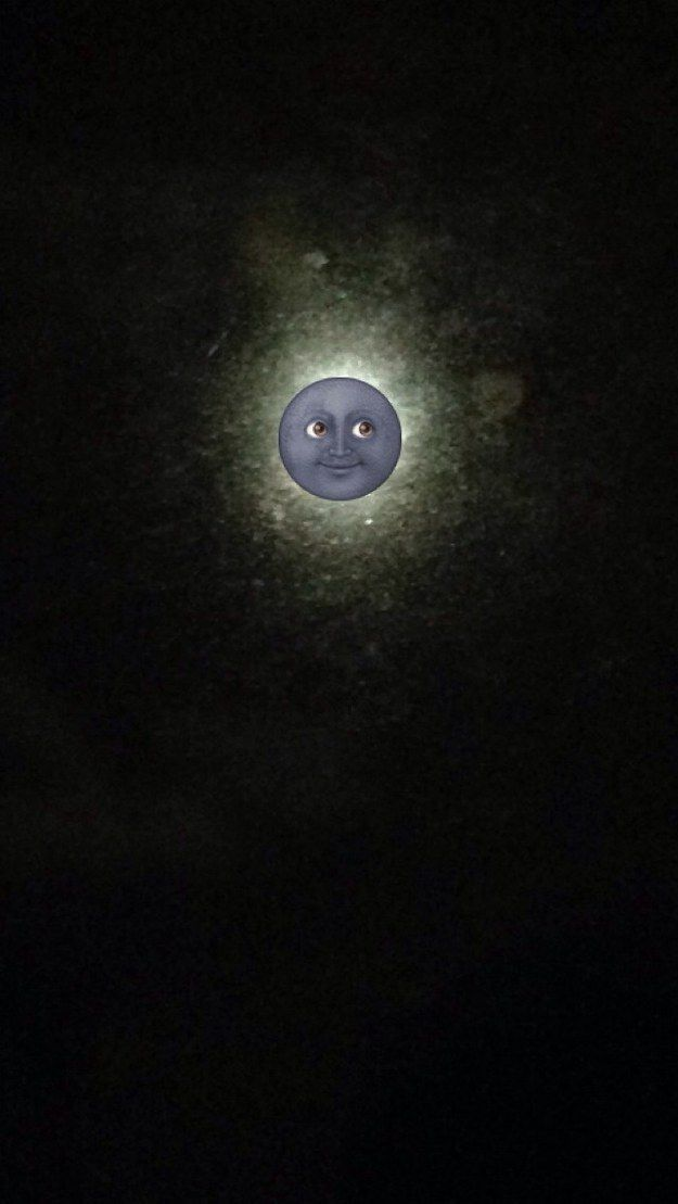 As an accessory for gorgeous photography: | 25 Incredibly Perfect Uses Of The Moon Emoji