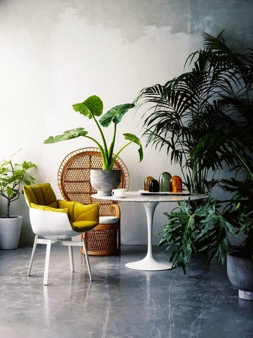 Effortlessly cool and totally #tropical #interior