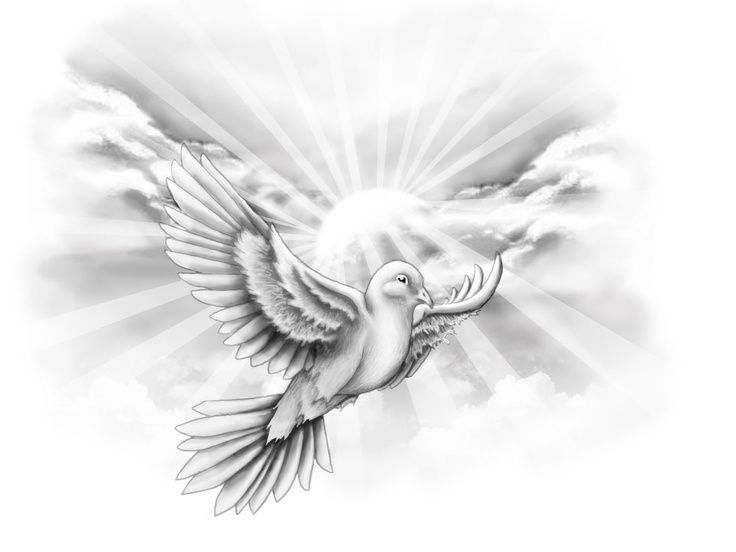 dove flying with clouds tattoo | Free designs White dove ...