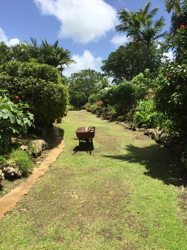 It is a lovely day for some gardening at Orchid World and Tropical Flower Garden in Barbados