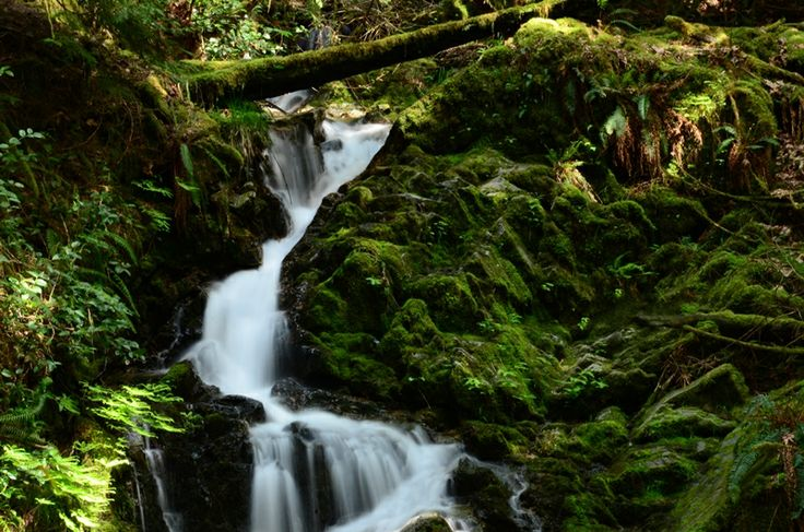 Waterfall along Musgrave Road on Salt Spring Island