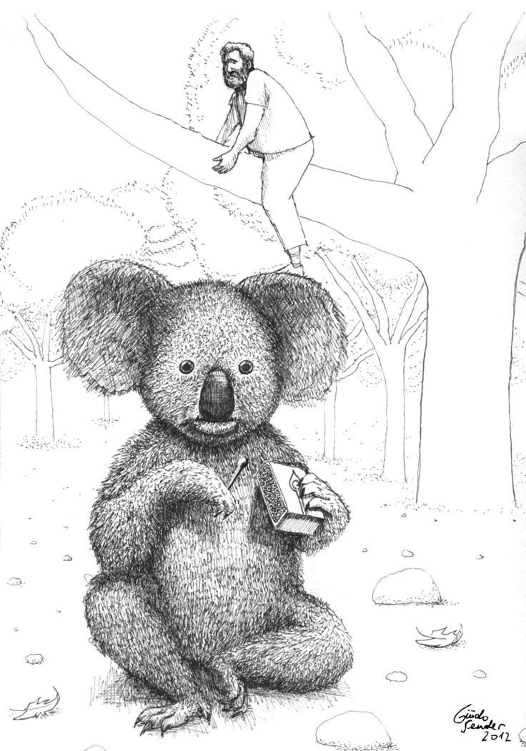 Exploding Koala
