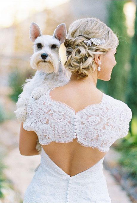 Bride with Bride with Backless Dress and White Puppy Ways to Include Your Pet in the Wedding | Brides.com