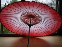 蛇の目傘(オーダー)