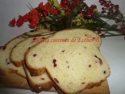Les plats cuisinés de Esther B: Pain aux canneberges et à l'orange (MAP)