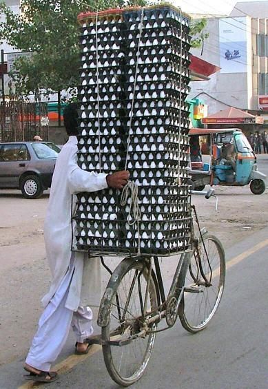 Transportation of eggs is not an easy task at all...But for everything there is a solution in India! :) Plan your tailor made trip in India with boutique tour organizer Nomaday travel: www.nomadaytravel.com