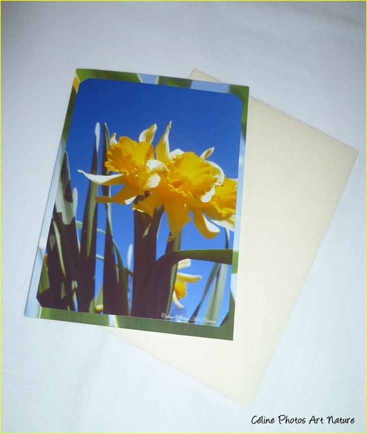 """Carte double 10,5x15cm réalisée à partir de photos de jonquilles sauvages"""" Bouquet de jonquilles """" : Cartes par celinephotosartnature"""