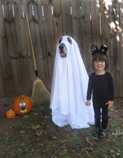 Dogs make EZ Halloween ghosts. Great Danes make even scarier ones!