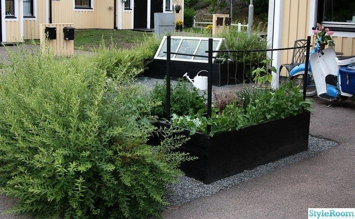 fönster,växthus,odlingslådor