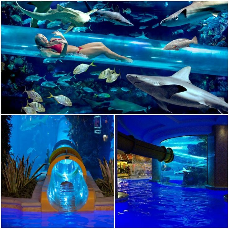 17 Best Images About Going To Vegas On Pinterest Planets
