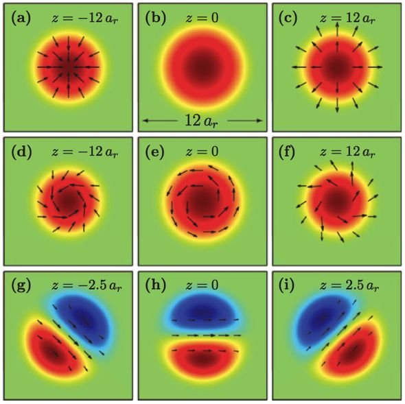 Phys. Rev. A 81, 063623 (2010)  Spin textures in condensates with large dipole moments