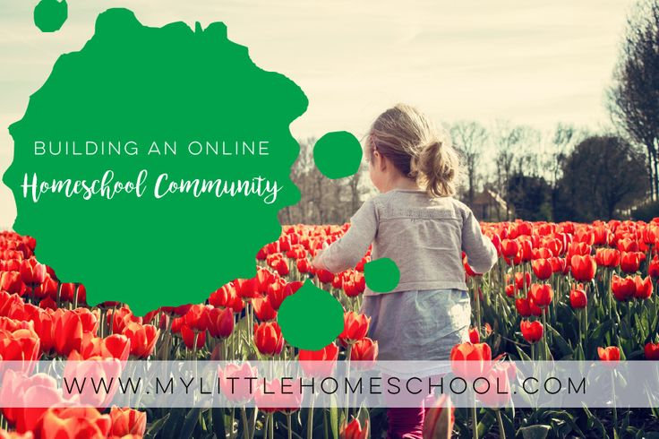 Homeschool follow loops on Instagram are great to create an online community of like-minded people. Read on to see how it works and why you should try one. Click visit for more blog posts about homeschooling, special needs kids and twins.