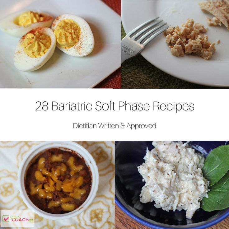 Bariatric and Pureed Recipes After Bariatric Surgery written by Dietitian Steph Wagner MS RDN