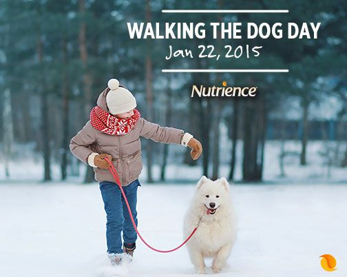 Your #dog will love this day! Take them outside for a good, long walk. #activepets #active #dogs