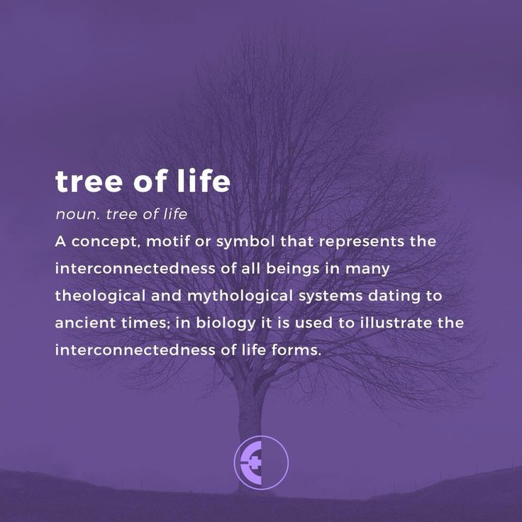 Tree Of Life Ideal Size Of A 48: 181 Best Images About Tree Of Life / Kabbalah On Pinterest
