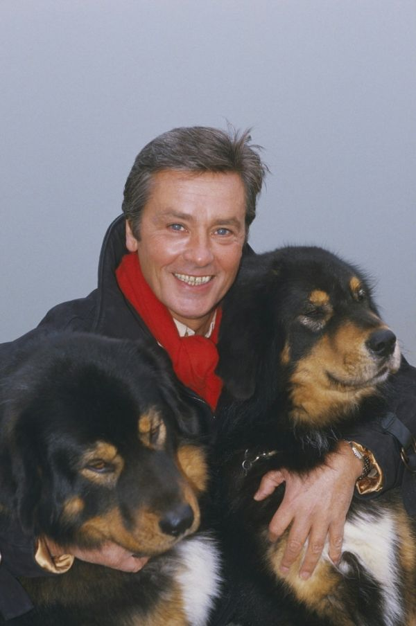 Alain Delon Photo: Alain and his love for animals ...