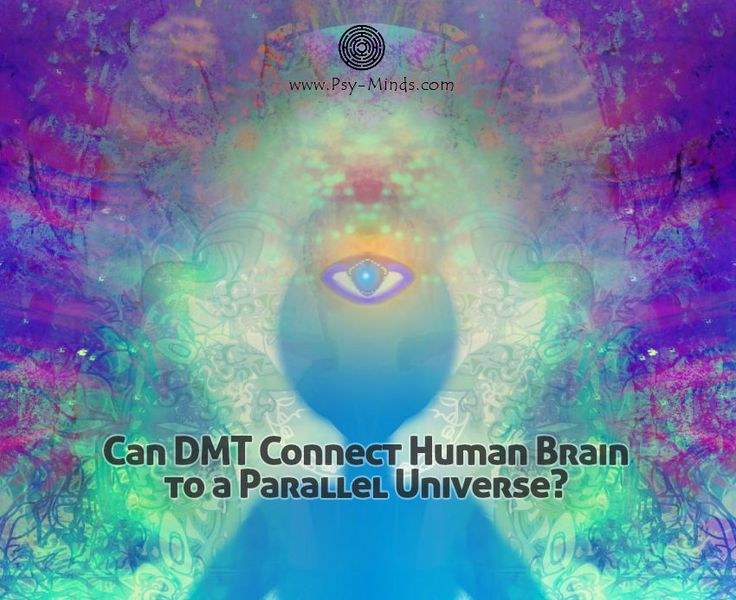 Can DMT Connect Human Brain to a Parallel Universe? - @psyminds17