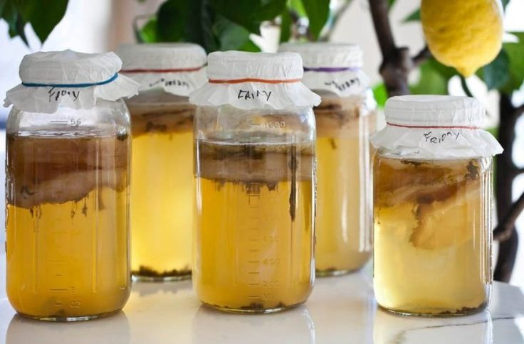 What's the perfect brewing time for your kombucha? We give you some tips for estimating how long you should ferment your kombucha