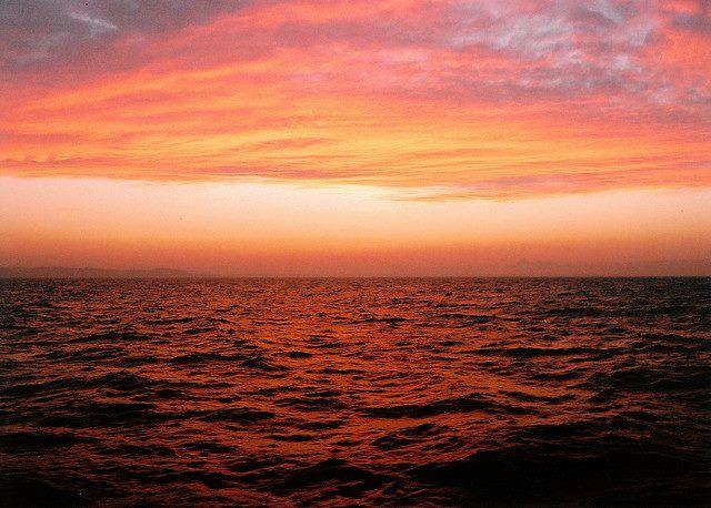 Curiosità - Mar Rosso, perchè si chiama così? a cura di Michela Lagnena - http://www.vivicasagiove.it/notizie/lo-sapevi-mar-rosso-strano-nome-perche/