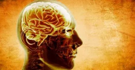 Studio: Consumare Zucchero causa Schizofrenia e Depressione