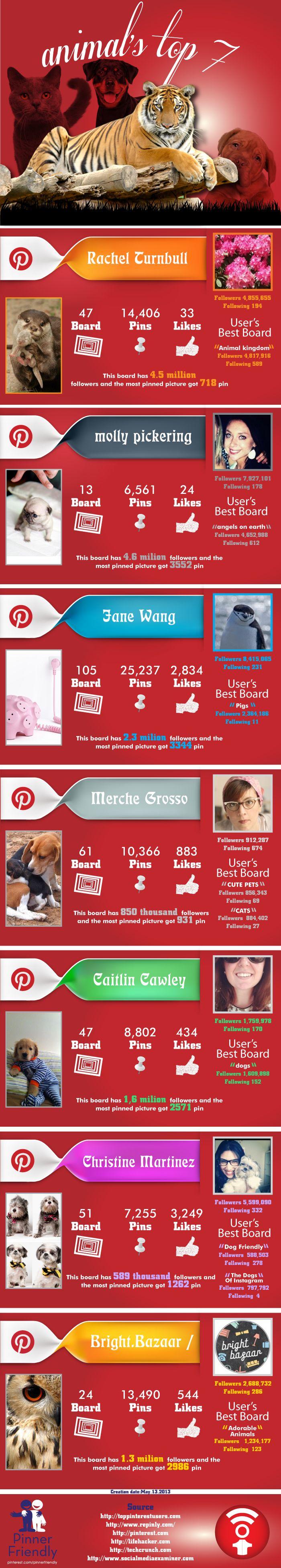 Animals Top7 Pinterest