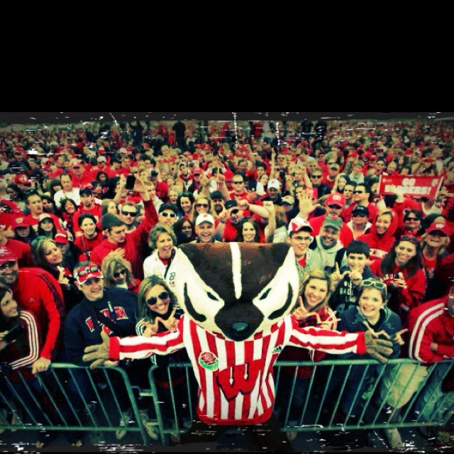 24 Best Wisconsin Badgers Images On Pinterest Wisconsin Badgers Packers And Autumn Fashion