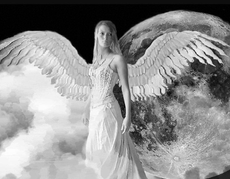 анимационные картинки ангелов с одним крылом оставить галочку