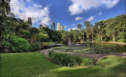 16} Have lunch in the Brisbane Botanical Gardens.