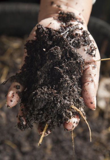 Organic Composting 101 - Making Compost Thats More Nutritious