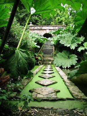 Kerdalo gardens, Brittany, France. Photo by Basilus West.